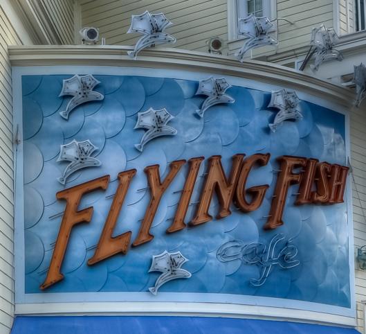 4F5A3028_FlyingFish-2