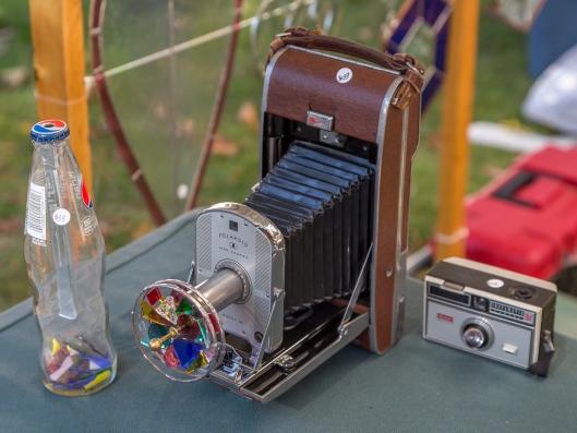 ISO 320, F/5.6, 1/125 sec, 73 mm Lens