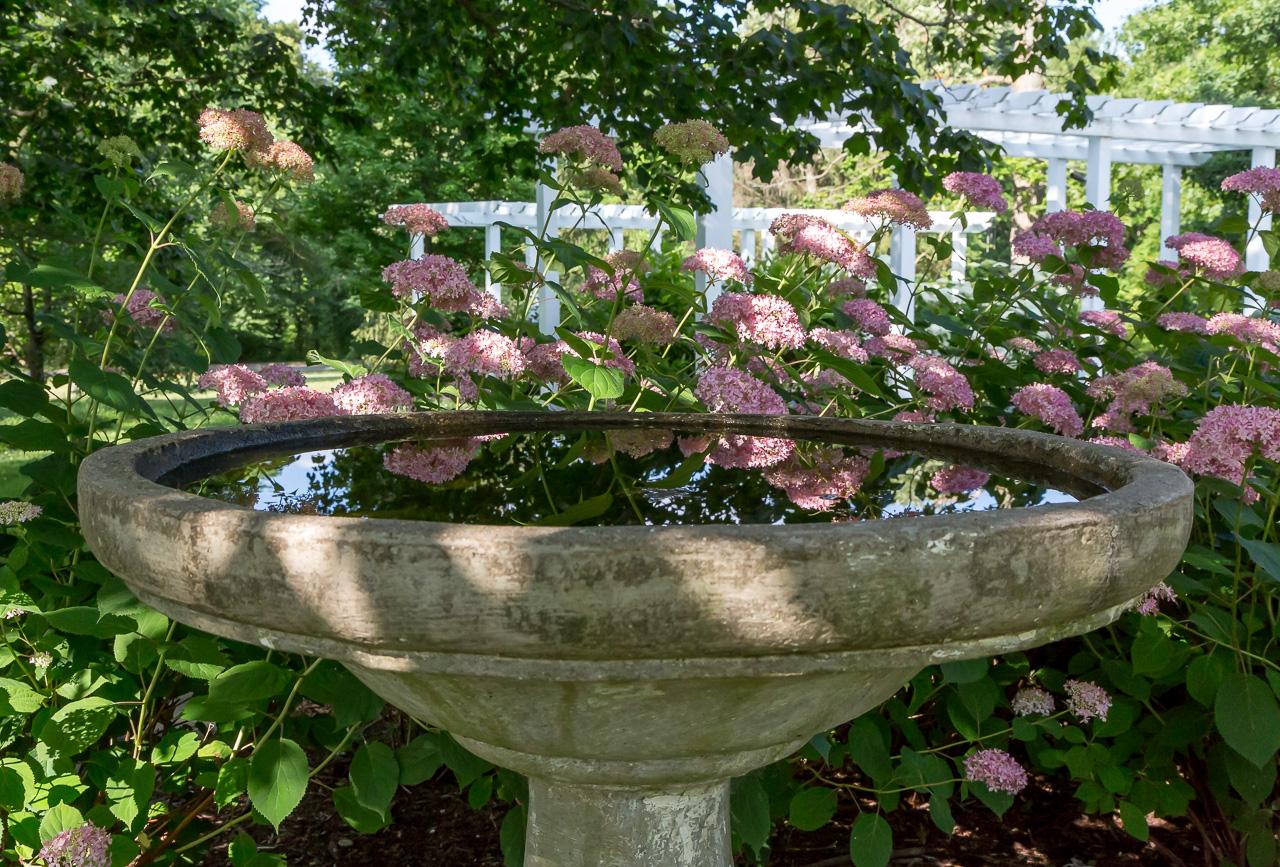 Botanical Gardens Jazzersten 39 S Hdr Blog
